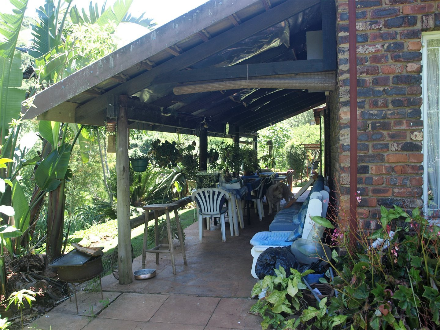 Camperdown property for sale. Ref No: 13567445. Picture no 20