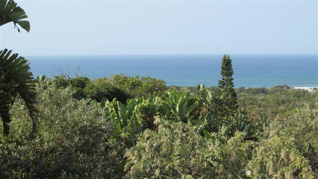 Trafalgar property for sale. Ref No: 12737873. Picture no 5
