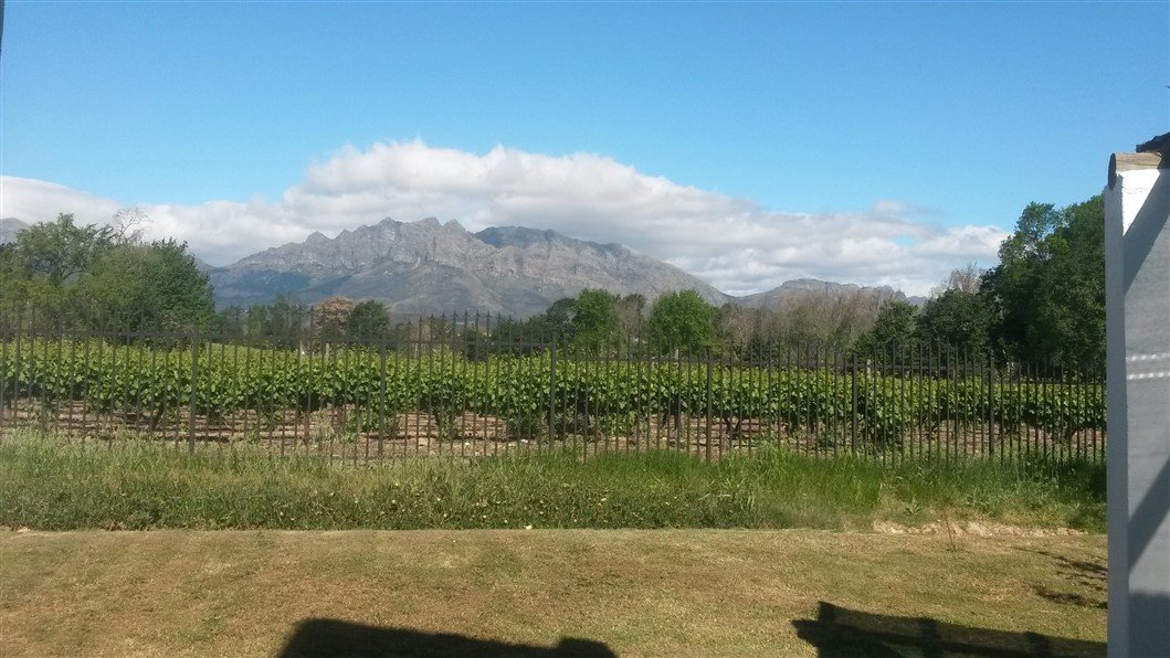 Property and Houses to rent in Wellington North, House, 3 Bedrooms - ZAR , 10,00*,M