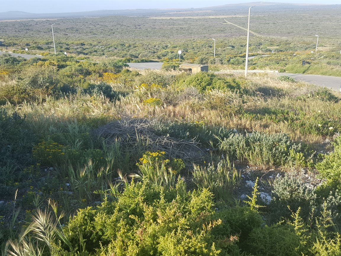 Yzerfontein property for sale. Ref No: 13400423. Picture no 3