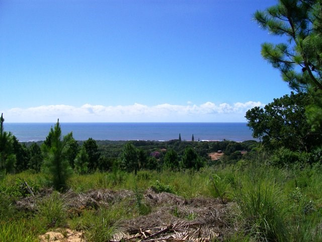 Palm Beach property for sale. Ref No: 12731210. Picture no 1