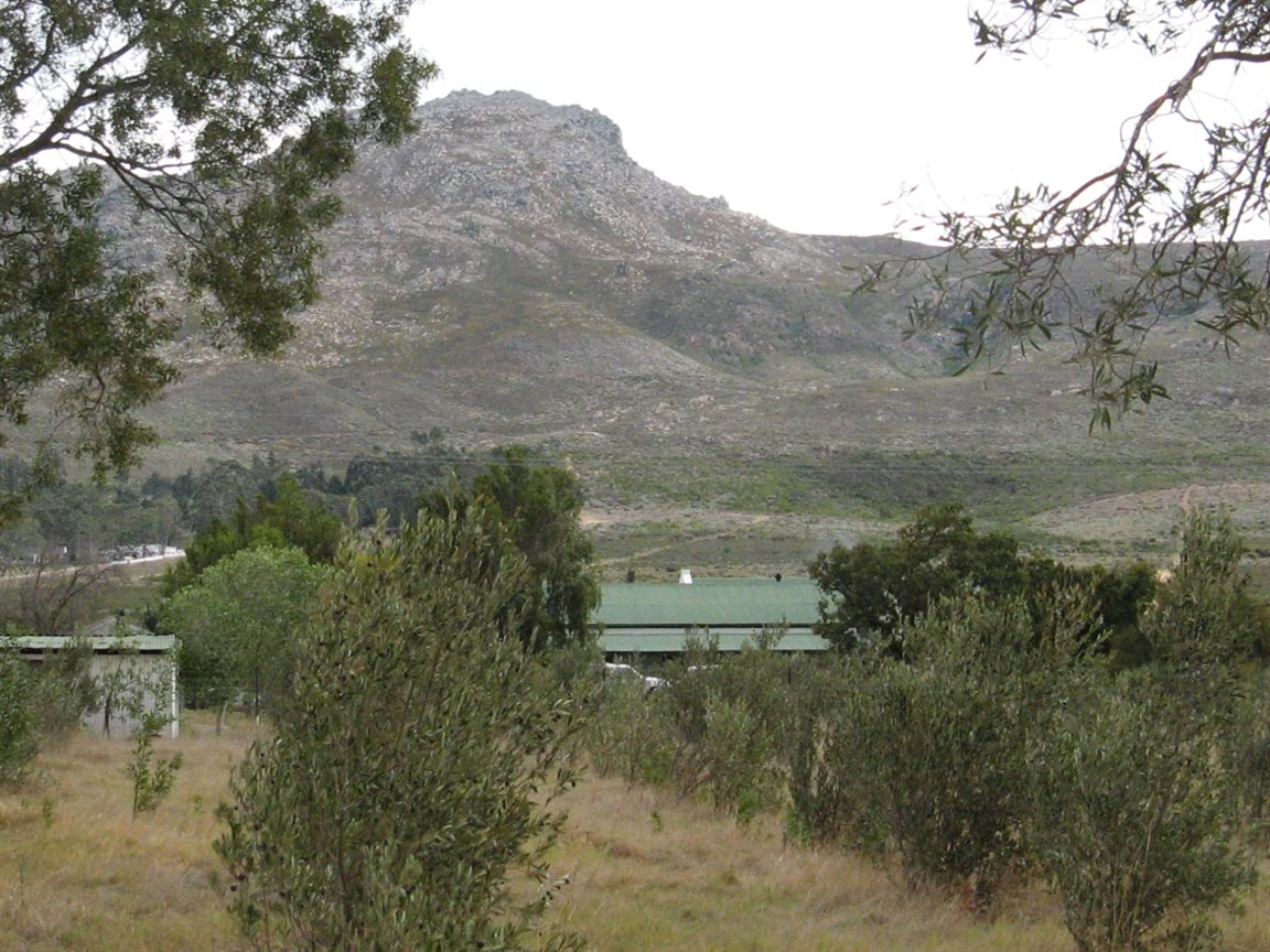 Tulbagh property for sale. Ref No: 12777178. Picture no 8