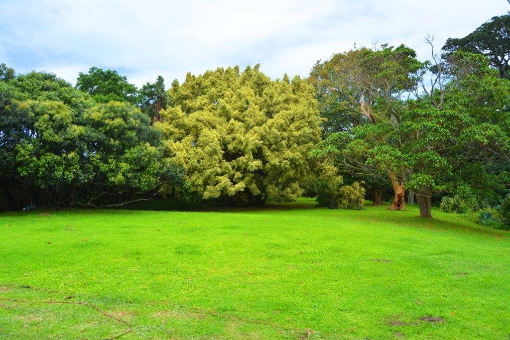 Woodgrange property for sale. Ref No: 13413908. Picture no 7