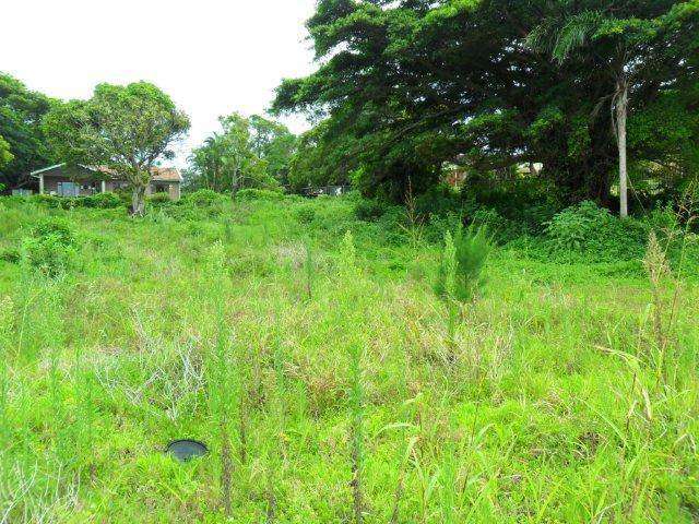 Umtentweni property for sale. Ref No: 12729240. Picture no 3
