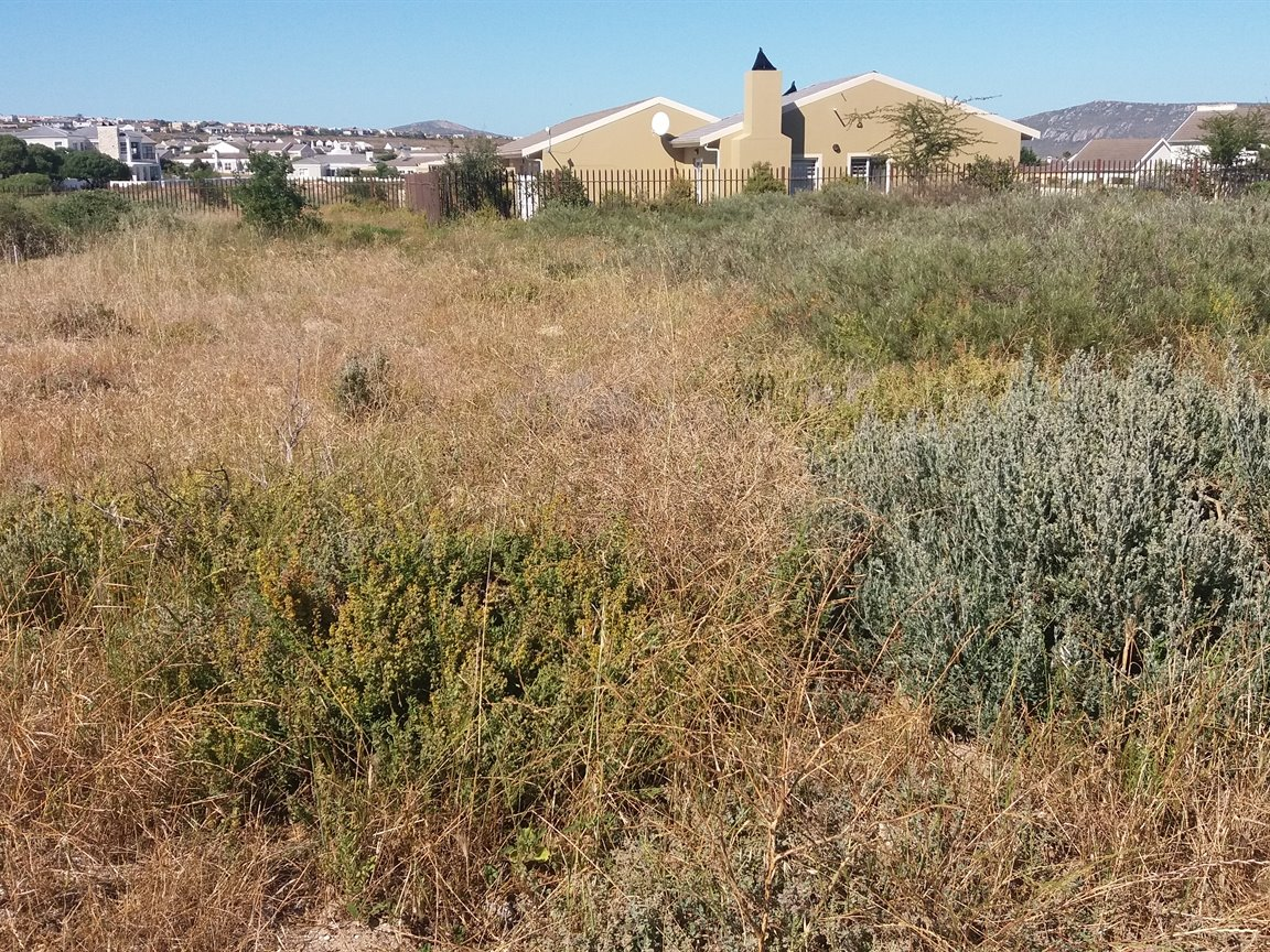 Langebaan Country Estate property for sale. Ref No: 13402074. Picture no 3