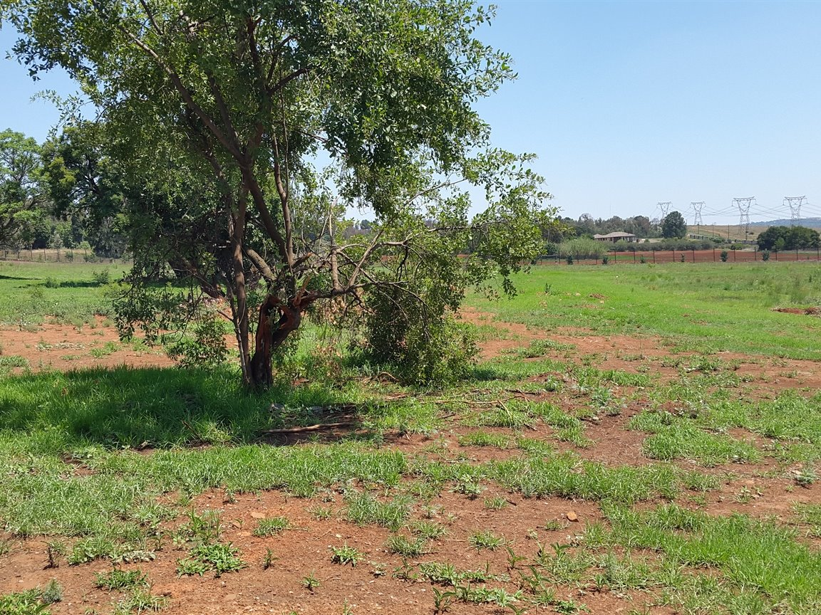 Doornkloof property for sale. Ref No: 13283502. Picture no 14