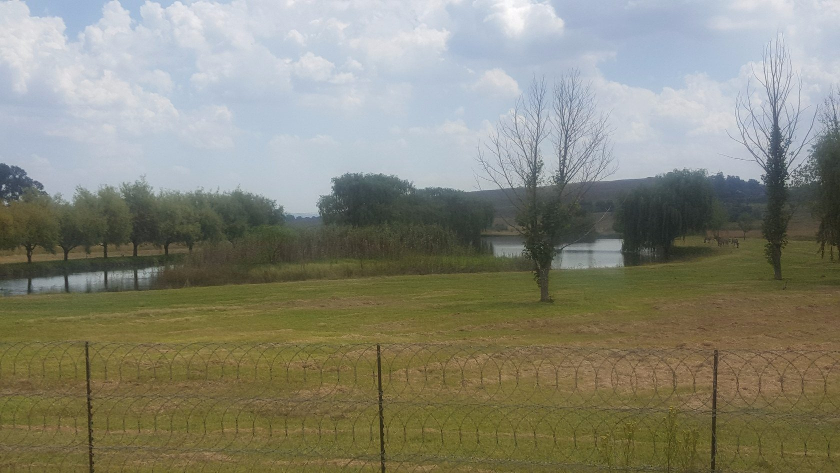 Property Midvaal : Houses For Sale Midvaal (All), Hartzenbergfontein, Farms 6 bedrooms property for sale Price:12,000,000