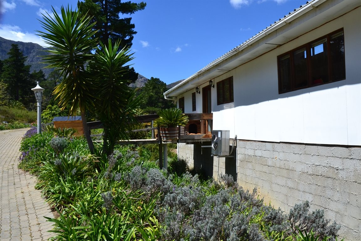 Wellington property for sale. Ref No: 13399562. Picture no 7