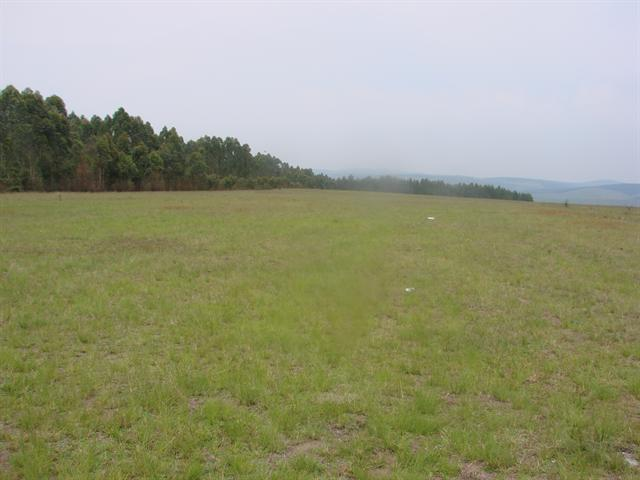 Ixopo property for sale. Ref No: 12726816. Picture no 2