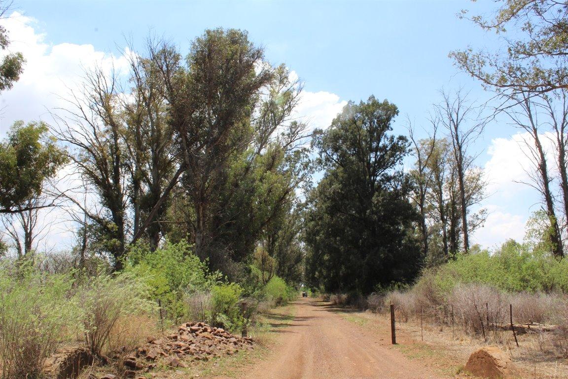 Rietfontein I Q property for sale. Ref No: 13409258. Picture no 14