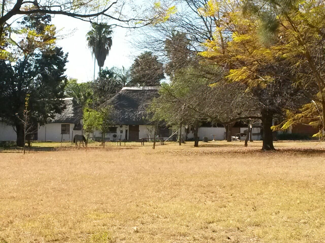 Krugersdorp, Nooitgedacht Property  | Houses For Sale Nooitgedacht, Nooitgedacht, House  property for sale Price:4,950,000