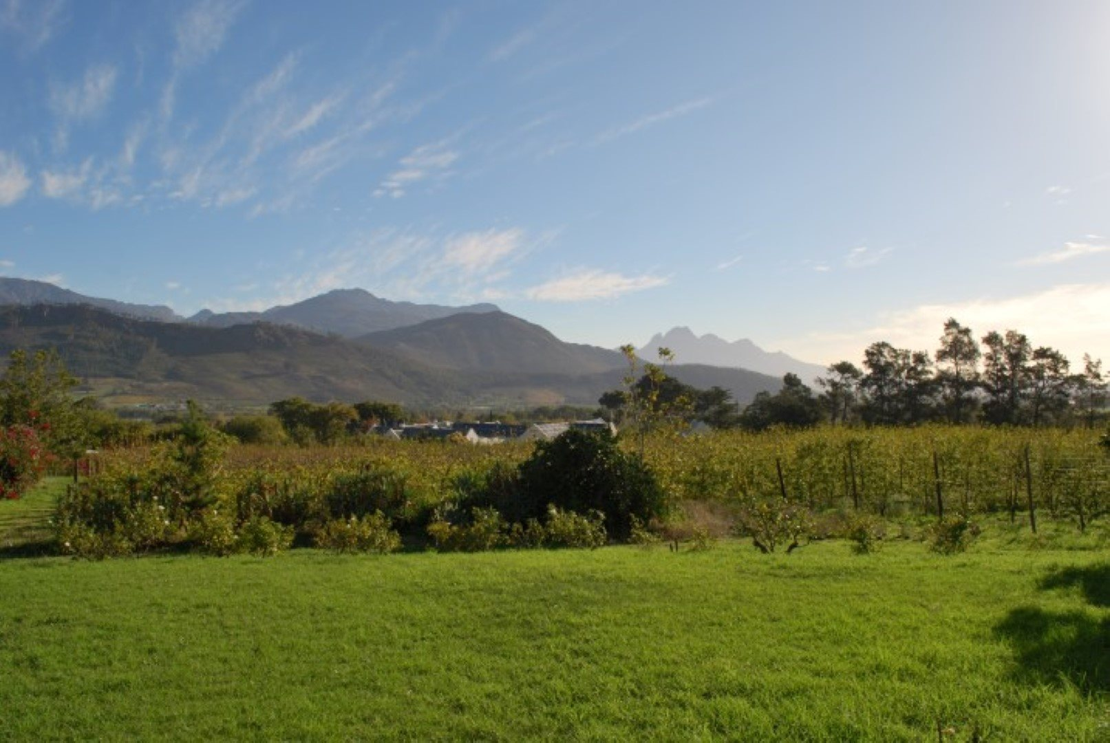 Franschhoek property for sale. Ref No: 13623511. Picture no 3