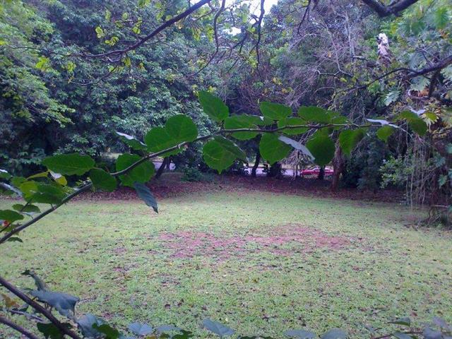 Umtentweni property for sale. Ref No: 12736859. Picture no 6