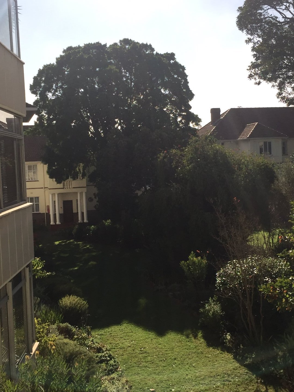 Rondebosch property to rent. Ref No: 13506199. Picture no 14