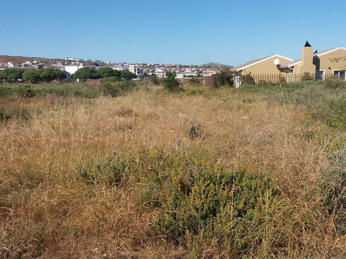 Langebaan Country Estate property for sale. Ref No: 13402074. Picture no 1