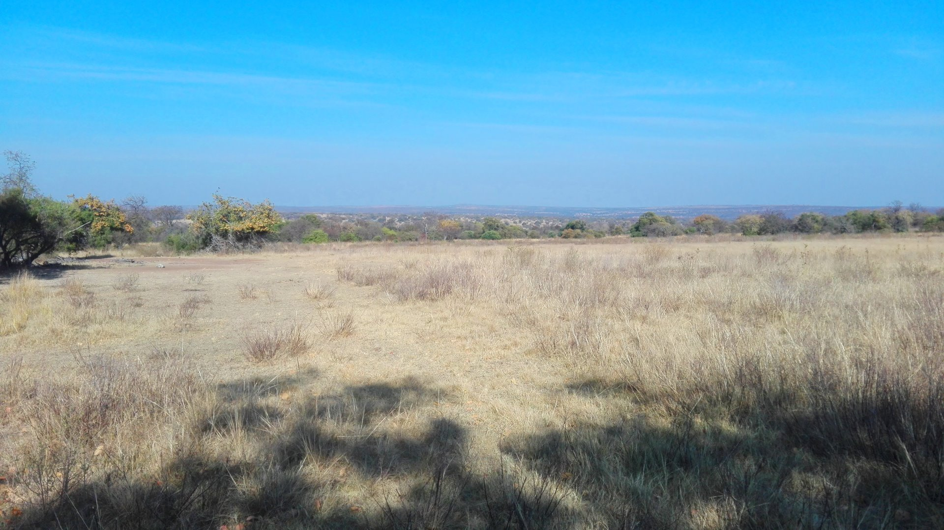 Cullinan Rural property for sale. Ref No: 13521469. Picture no 12