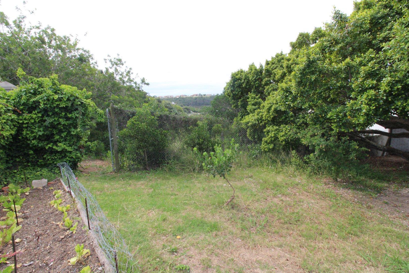 Plettenberg Bay property for sale. Ref No: 13566305. Picture no 5