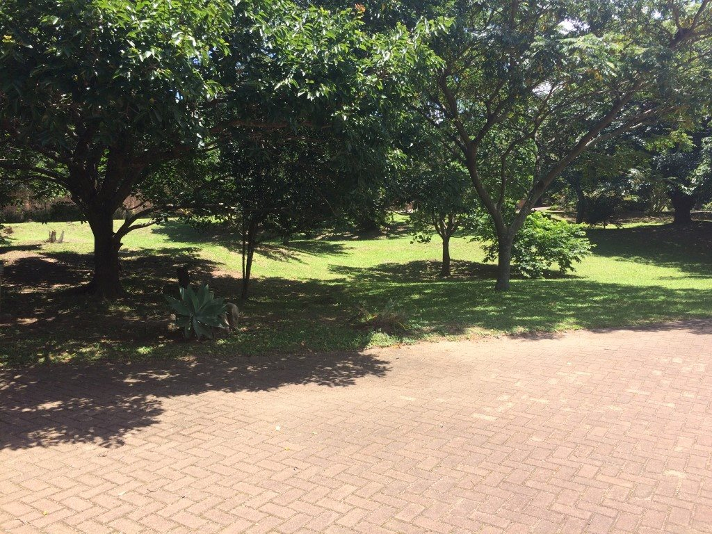 Uvongo property for sale. Ref No: 13281674. Picture no 23