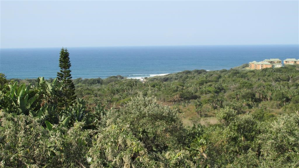 Trafalgar property for sale. Ref No: 12737873. Picture no 2