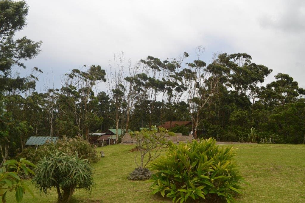 Hibberdene property for sale. Ref No: 13423871. Picture no 11