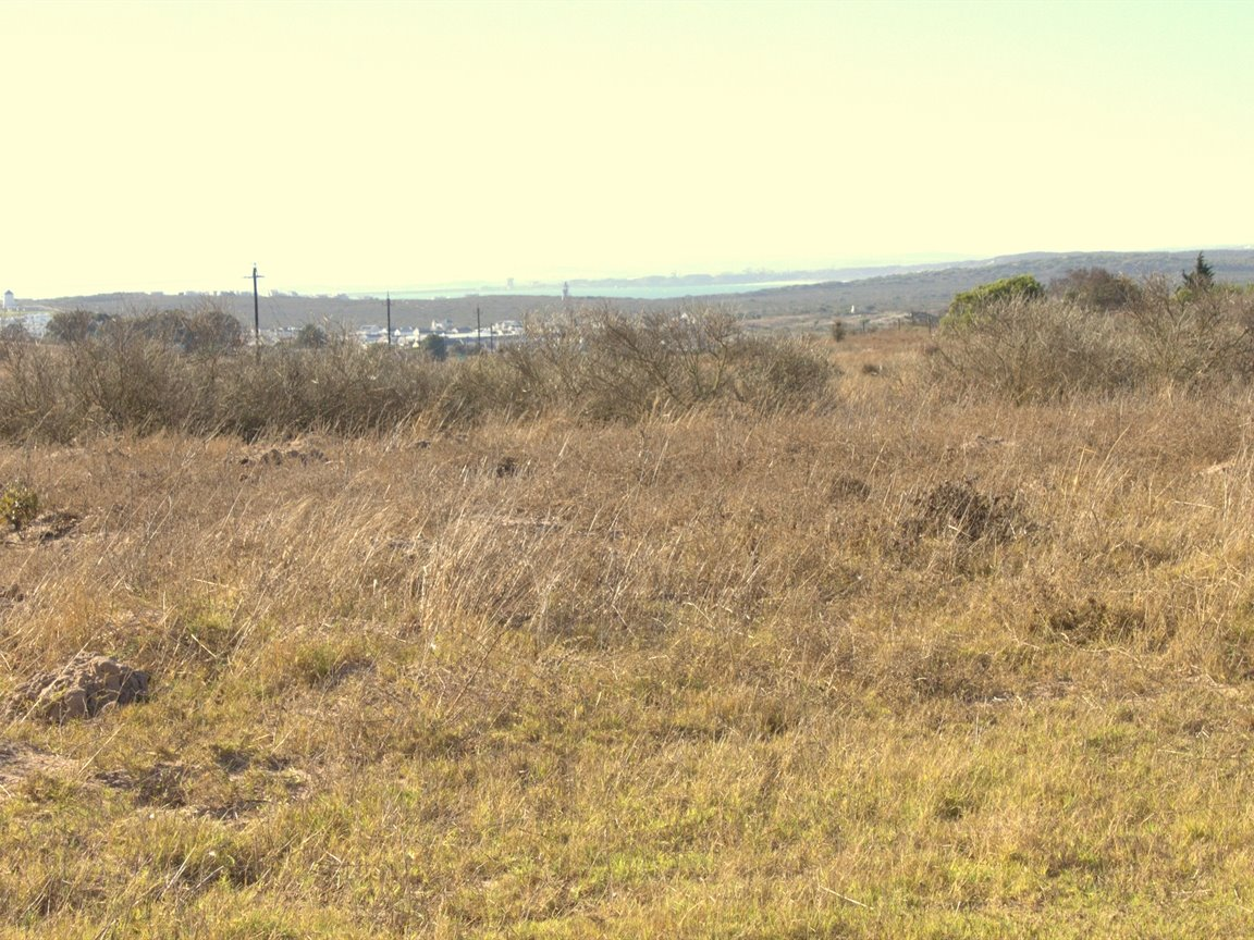 Long Acres Country Estate property for sale. Ref No: 12771837. Picture no 12