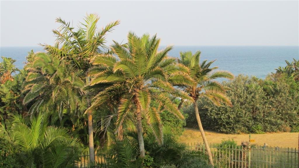 Marina Beach property for sale. Ref No: 12756794. Picture no 2