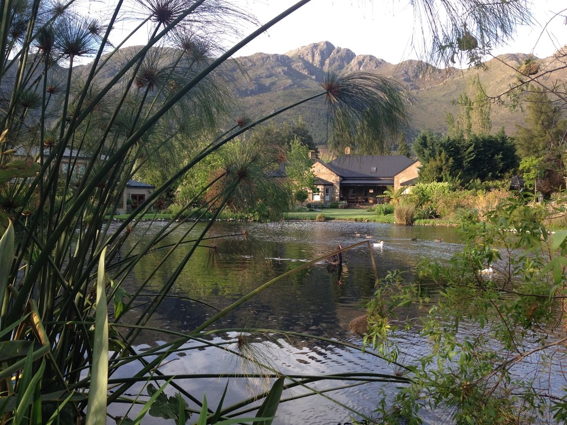 Franschhoek property for sale. Ref No: 13331892. Picture no 14