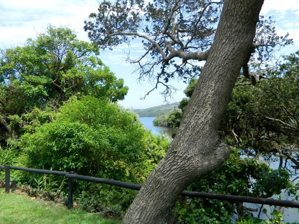 Sea Park property for sale. Ref No: 13399581. Picture no 30