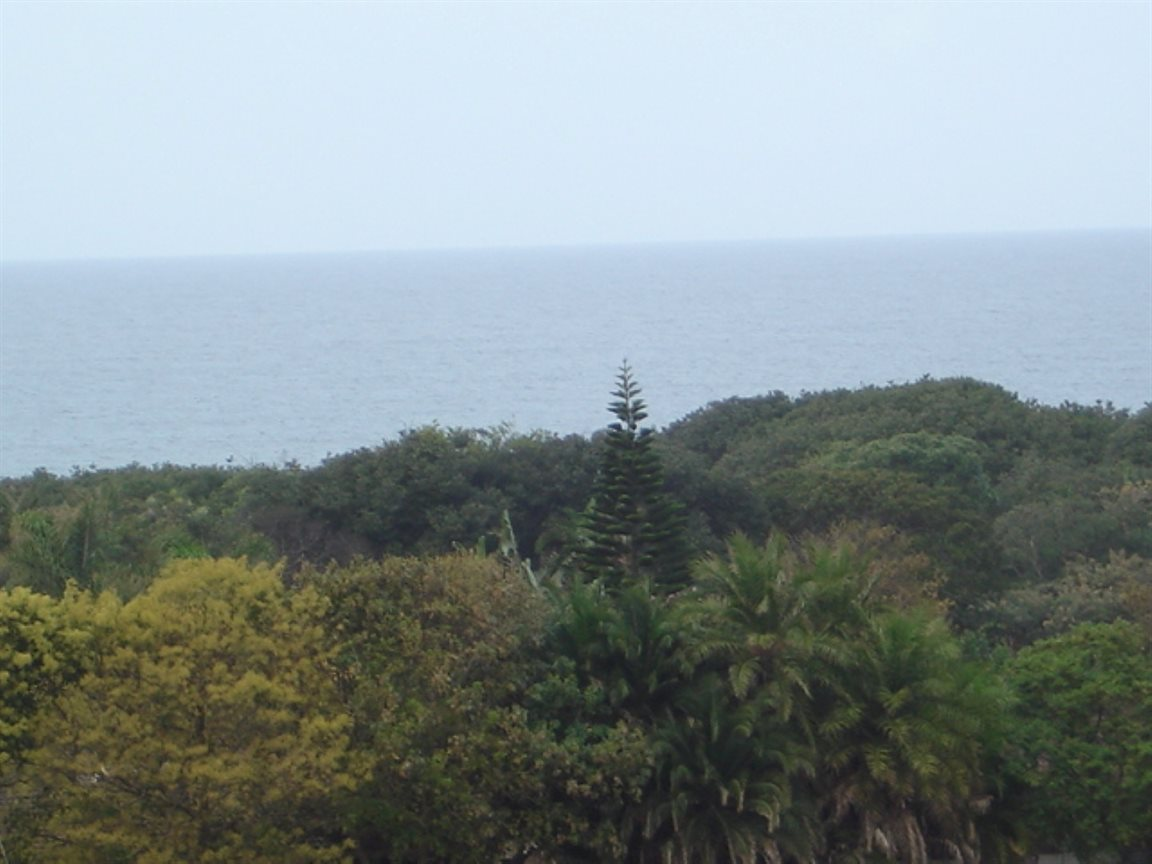 Shelly Beach property for sale. Ref No: 12764175. Picture no 14