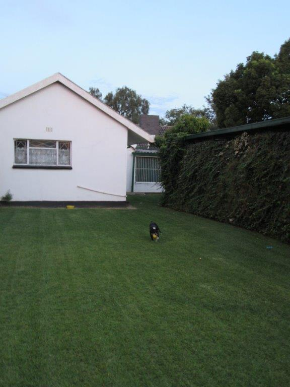 Three Rivers property for sale. Ref No: 13460207. Picture no 15