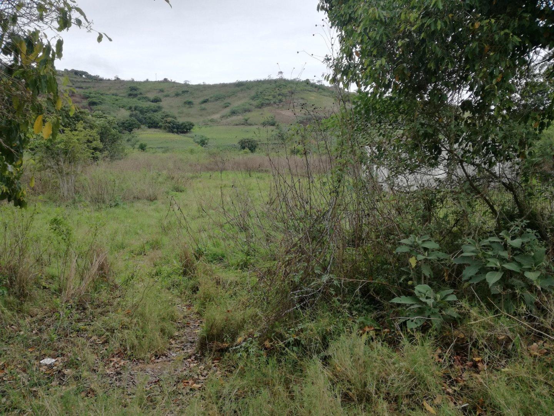 Umkomaas, Craigieburn Property  | Houses For Sale Craigieburn, Craigieburn, Farms  property for sale Price:750,000
