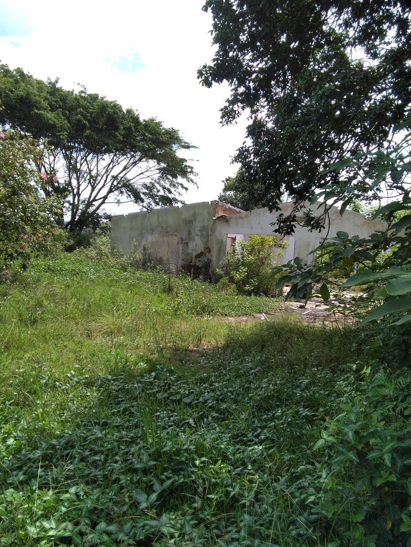 Craigieburn property for sale. Ref No: 13591749. Picture no 8
