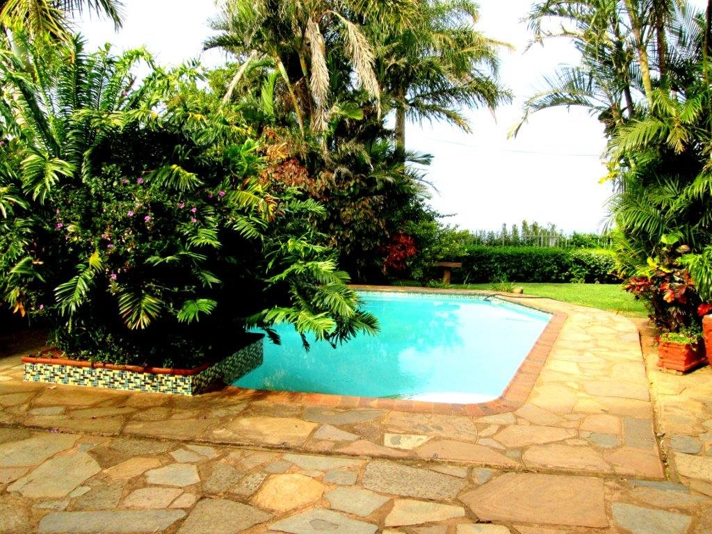 Shelly Beach property for sale. Ref No: 12792074. Picture no 4