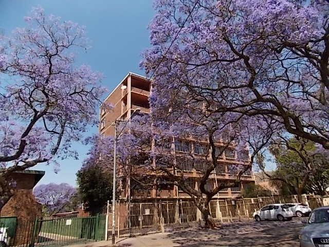 Pretoria, Pretoria North Property  | Houses For Sale Pretoria North, Pretoria North, Apartment  property for sale Price:26,500,000