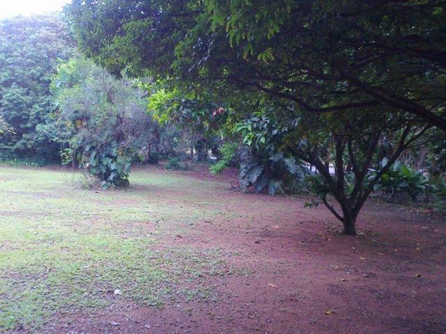 Umtentweni property for sale. Ref No: 12736859. Picture no 5