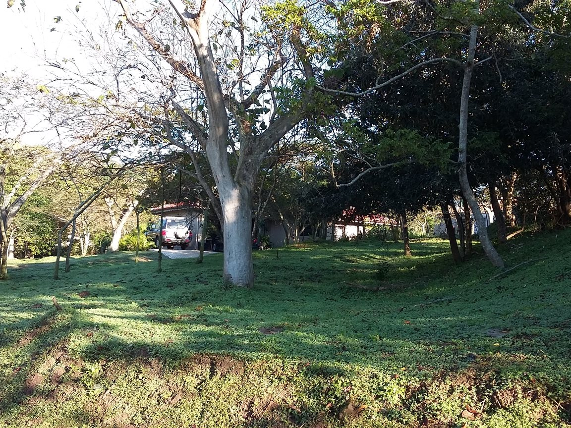 Pennington property for sale. Ref No: 13342095. Picture no 1