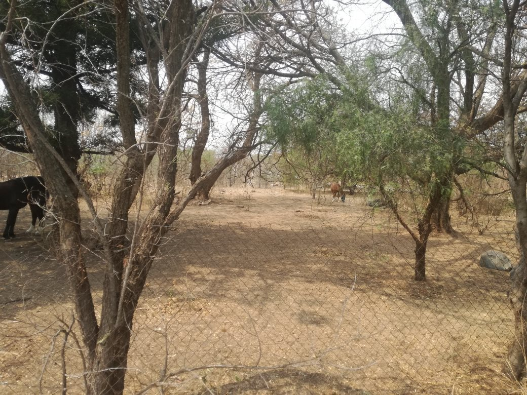Property and Houses for sale in Montana, Vacant Land - ZAR 3,565,000