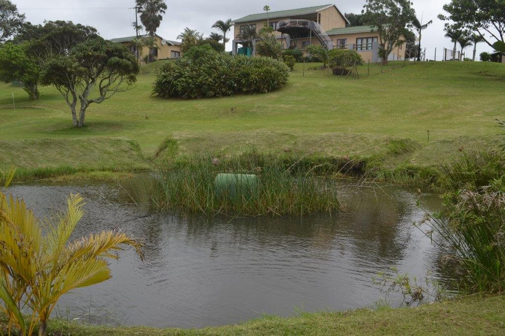 Hibberdene property for sale. Ref No: 13423871. Picture no 24