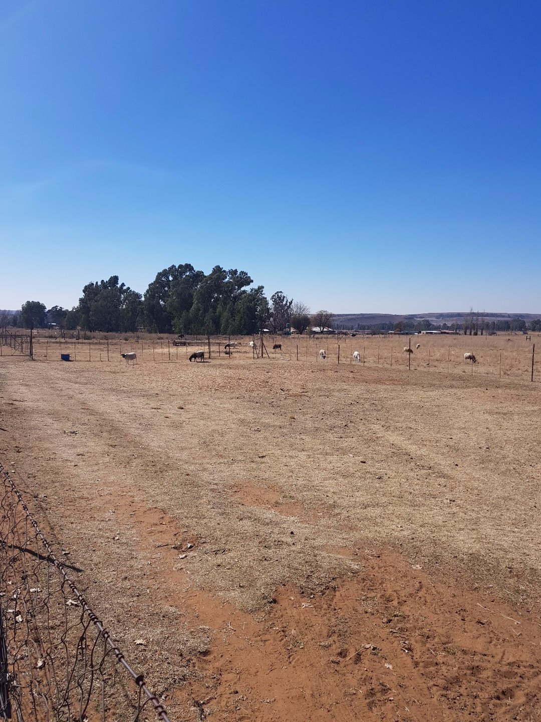 Bronkhorstspruit property for sale. Ref No: 13511049. Picture no 15