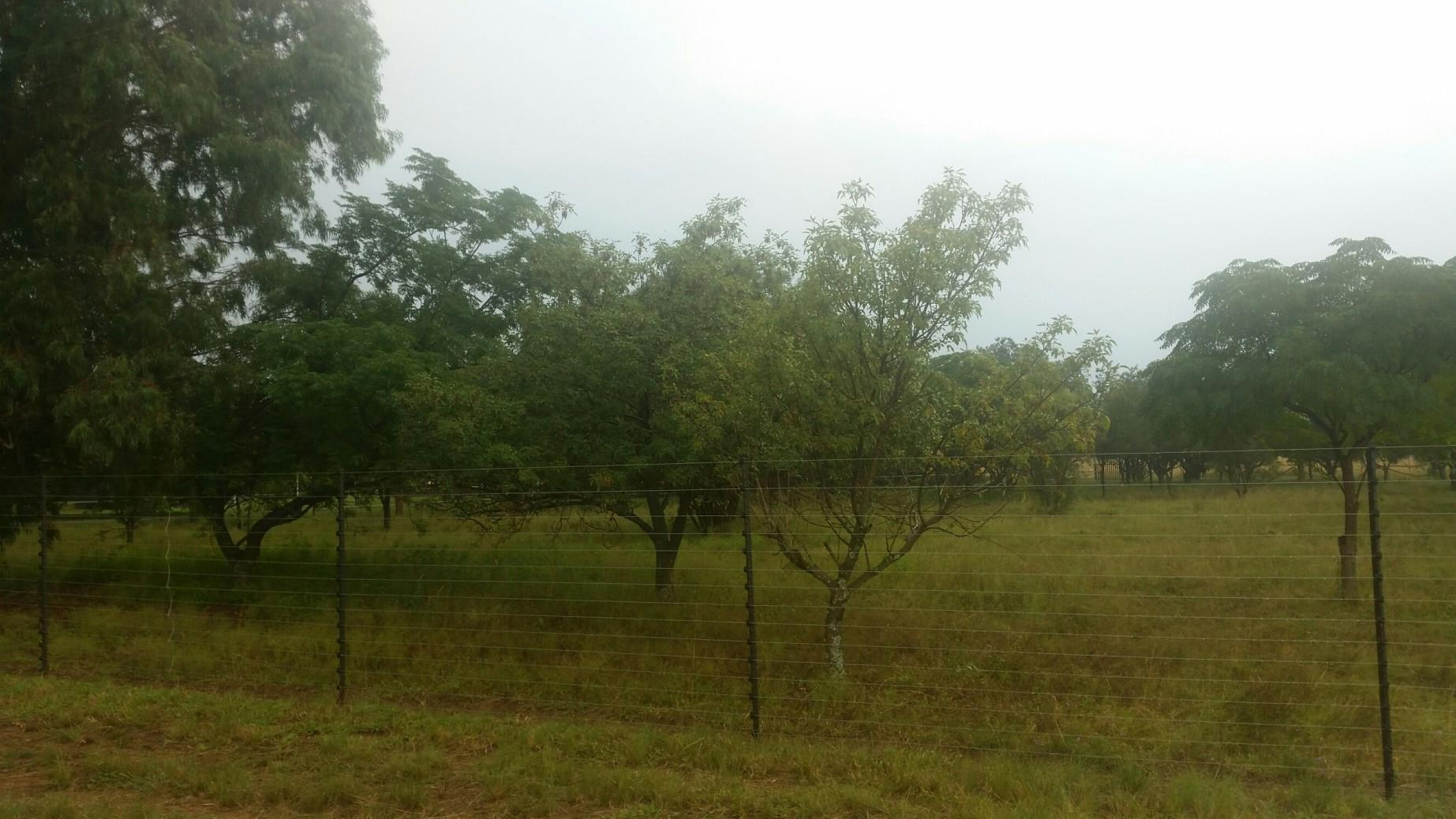 Vereeniging, Boltonwold Property  | Houses For Sale Boltonwold, Boltonwold, Vacant Land  property for sale Price:320,000