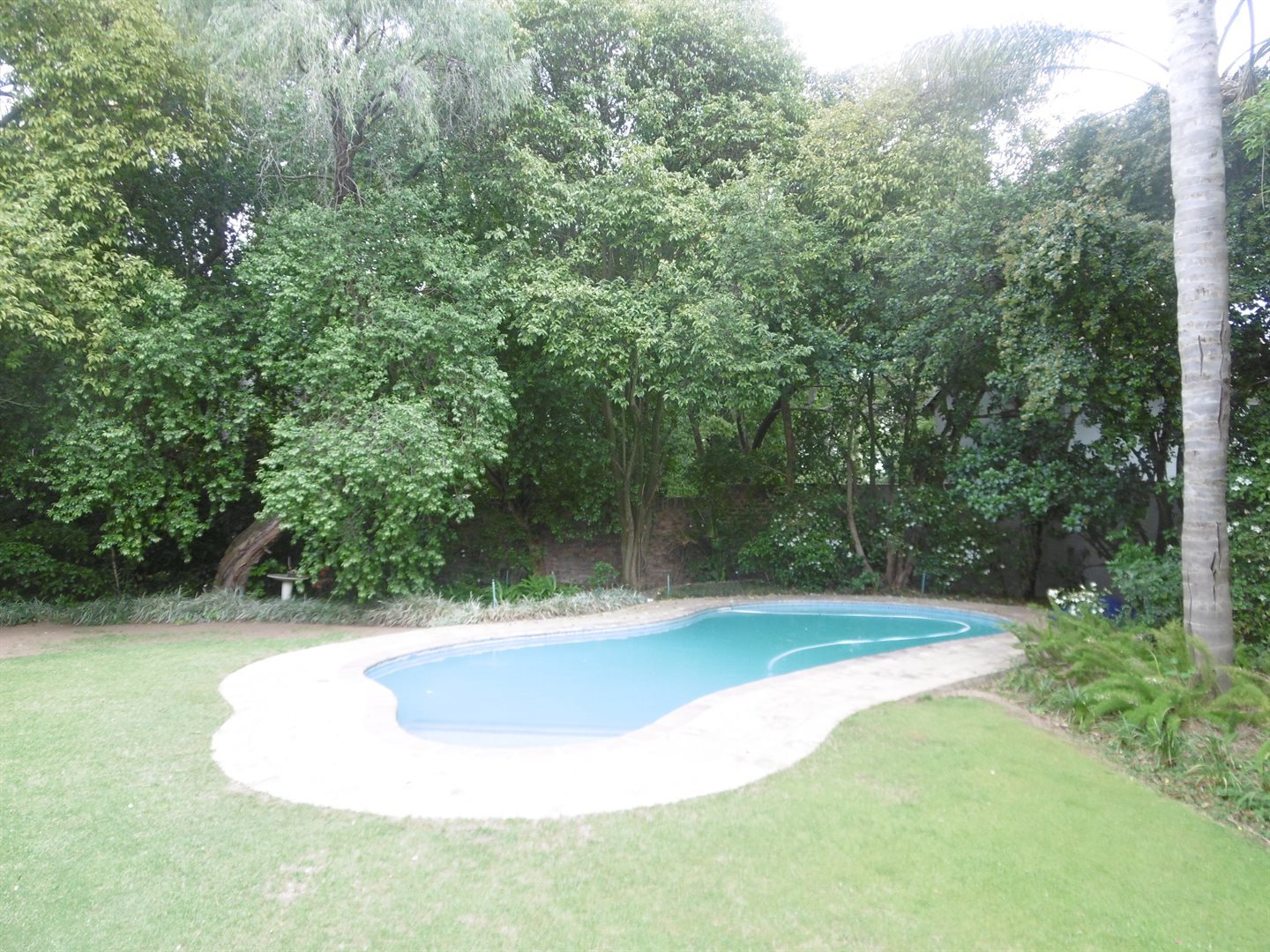 River Club property to rent. Ref No: 13552407. Picture no 5