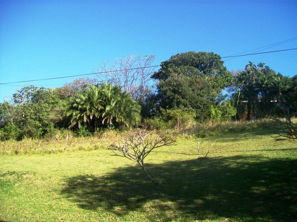 Palm Beach property for sale. Ref No: 13369758. Picture no 6