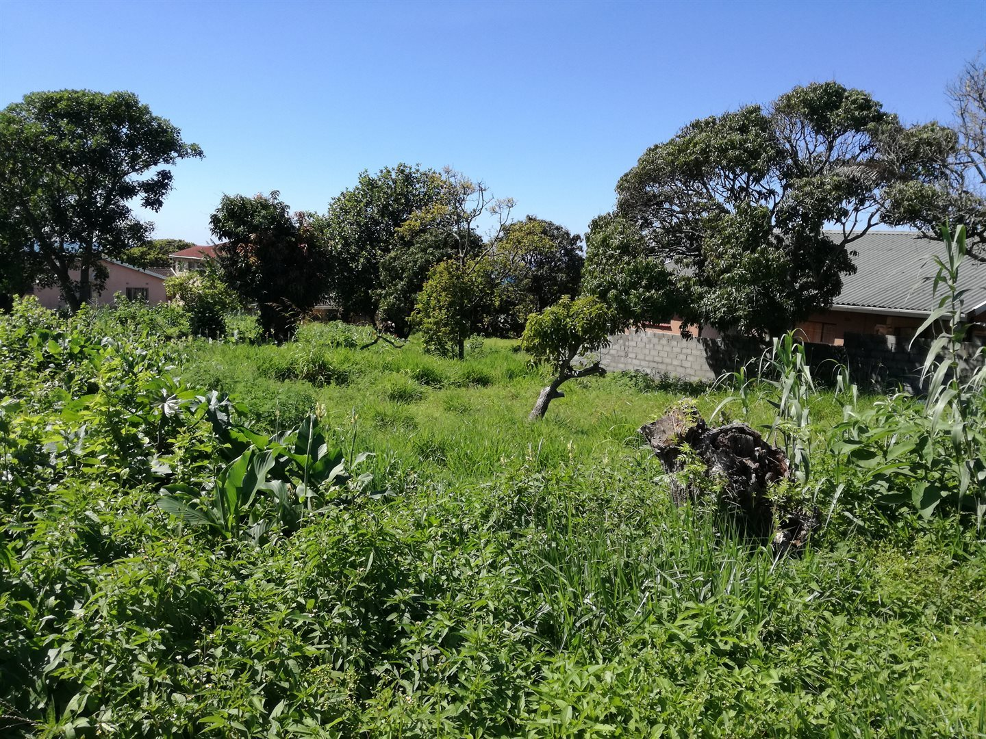 Scottburgh, Park Rynie Property  | Houses For Sale Park Rynie, Park Rynie, Vacant Land  property for sale Price:290,000