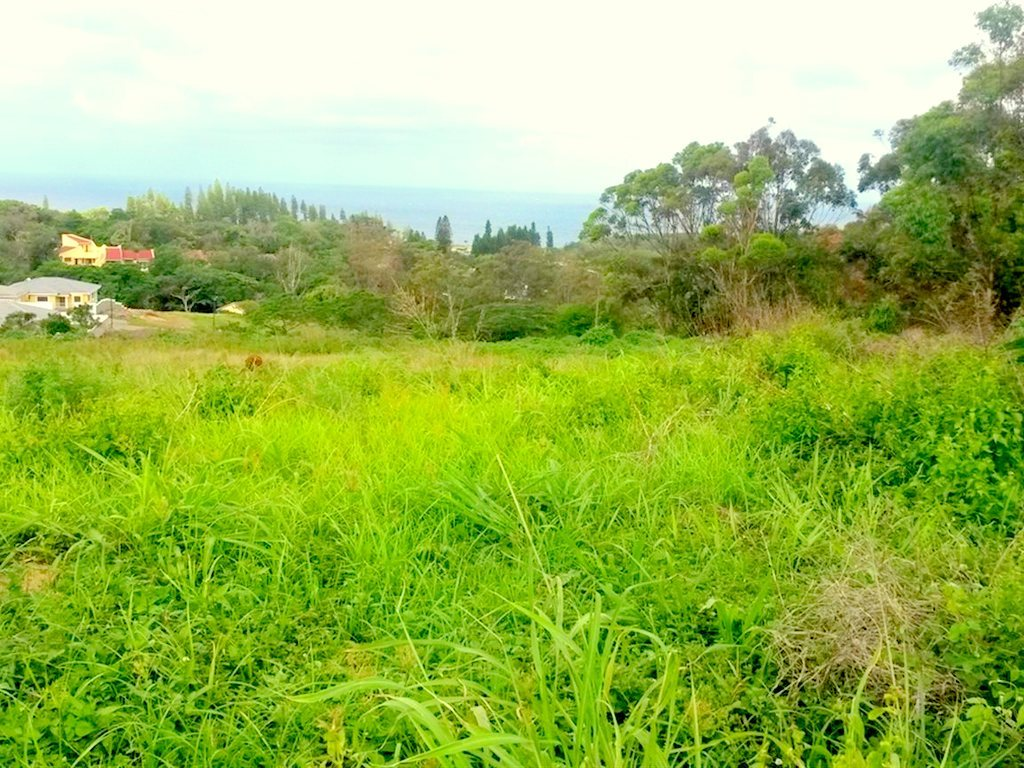 Umkomaas, Saiccor Village Property  | Houses For Sale Saiccor Village, Saiccor Village, Vacant Land  property for sale Price:399,000