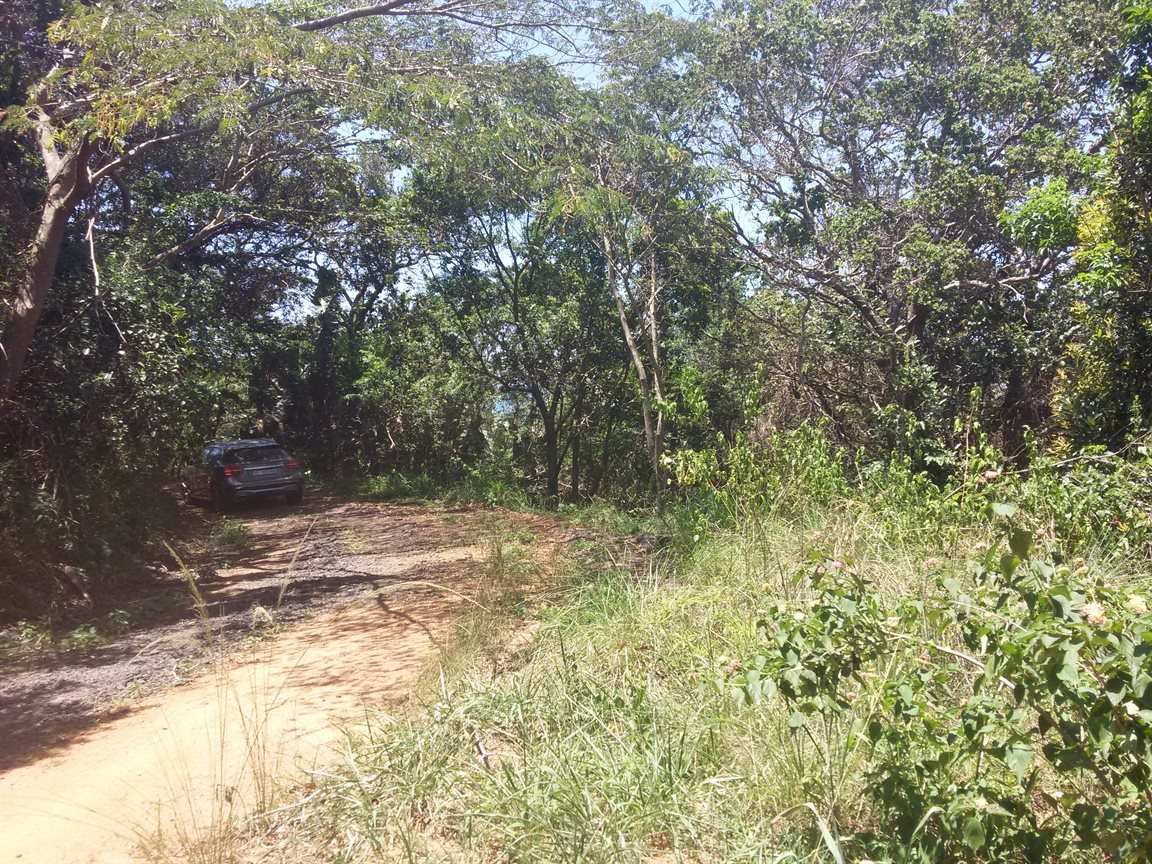 Pennington, Elysium Property  | Houses For Sale Elysium, Elysium, Vacant Land  property for sale Price:99,000