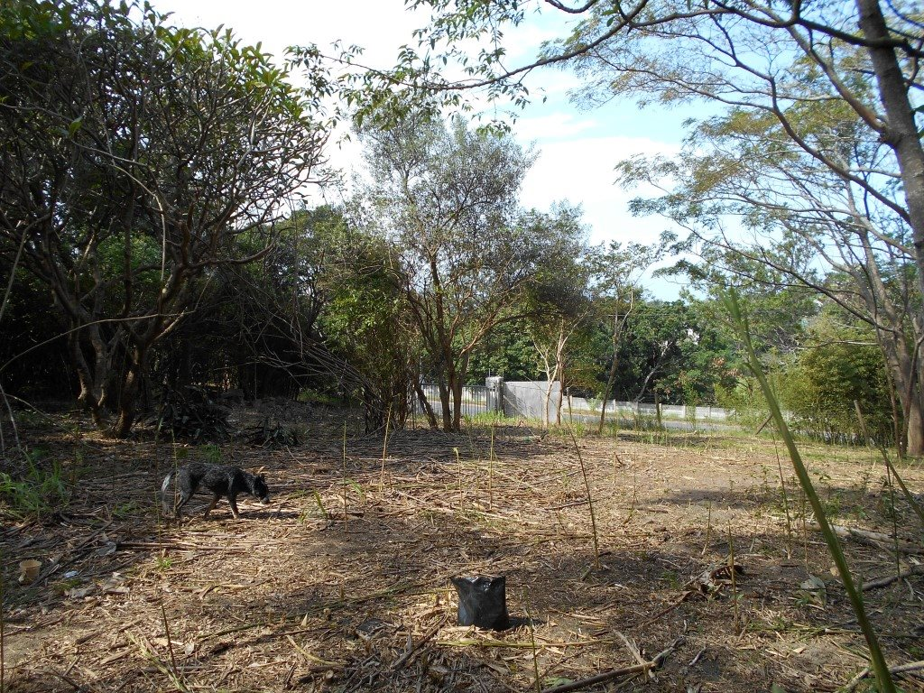 Uvongo property for sale. Ref No: 13325400. Picture no 17
