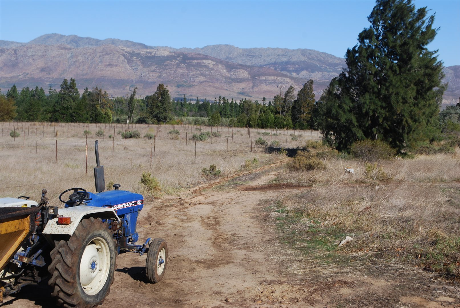 Tulbagh property for sale. Ref No: 13483757. Picture no 40