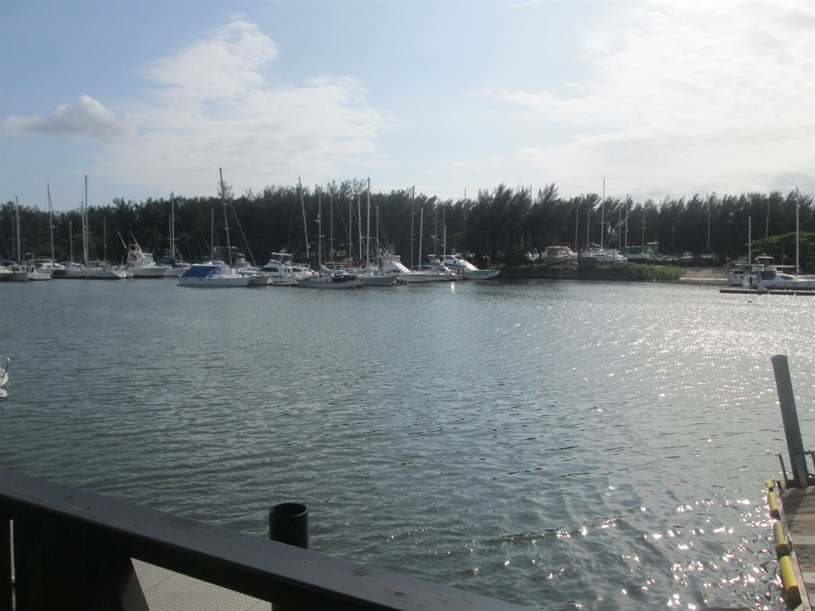 Meer En See property for sale. Ref No: 13454596. Picture no 2