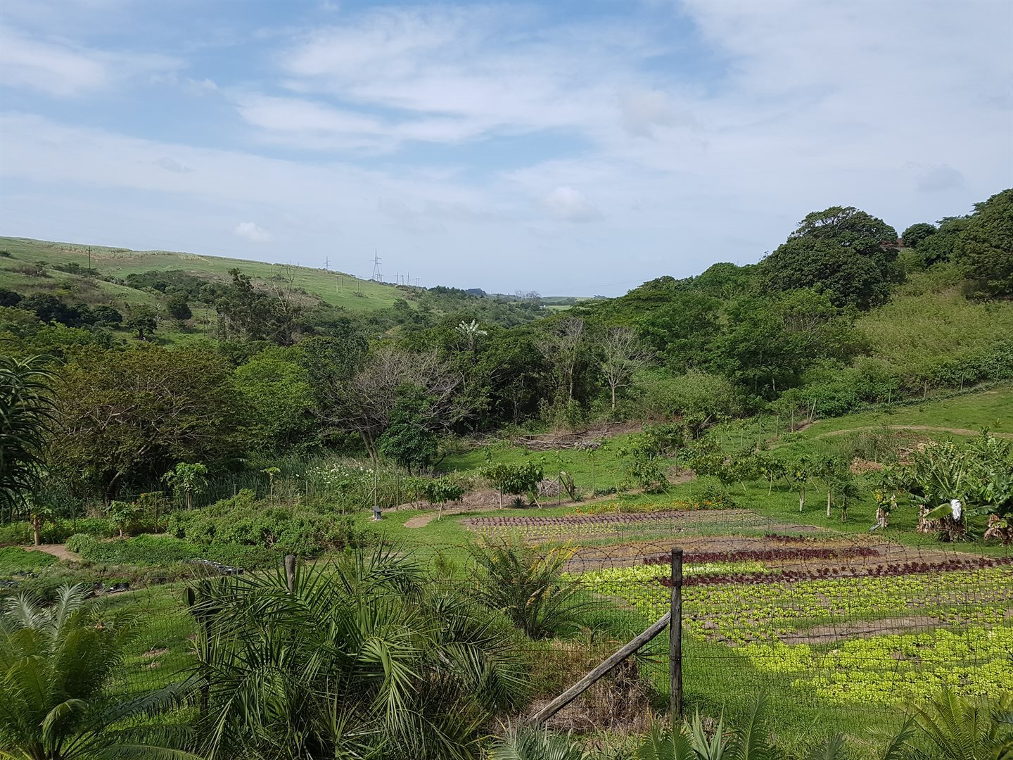 Umkomaas property for sale. Ref No: 13545604. Picture no 19