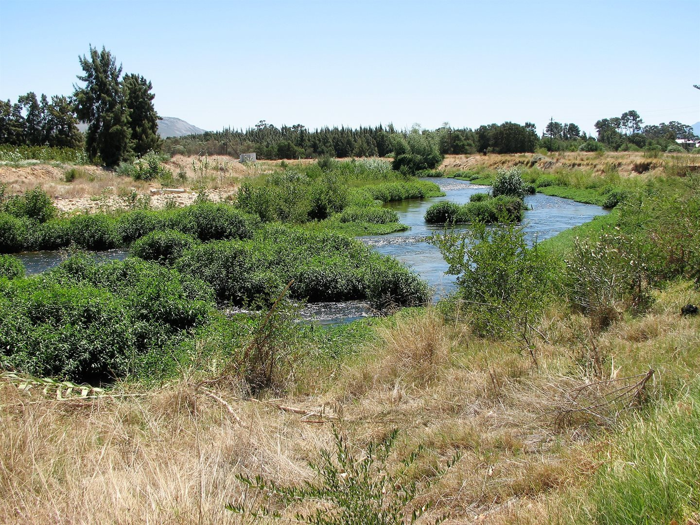 Pearl Valley On Val De Vie property for sale. Ref No: 13536297. Picture no 11